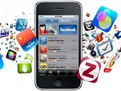 预计2013年全球应用市场规模将达270亿美元