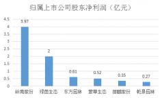 岭南股份2019业绩符合预期 基建订单猛增业绩有望